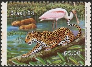Braz1922b