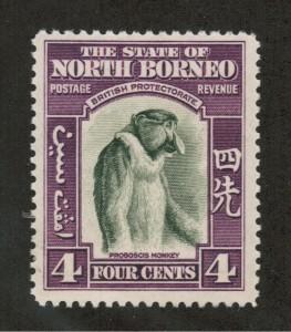 NOBO196